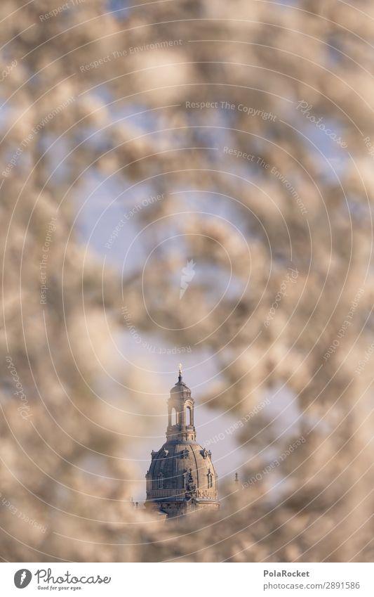 #A# Dresdner Blüte V Umwelt Klima ästhetisch Dresden Frauenkirche Sachsen Blühend Blühende Landschaften Kuppeldach Historische Bauten Farbfoto Gedeckte Farben