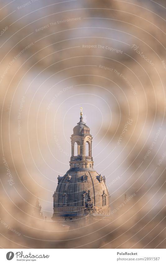 #A# Dresdner Blüte IV Umwelt Schönes Wetter ästhetisch Dresden Frauenkirche Sachsen Deutschland historisch Historische Bauten Kirche Gebäude Kuppeldach