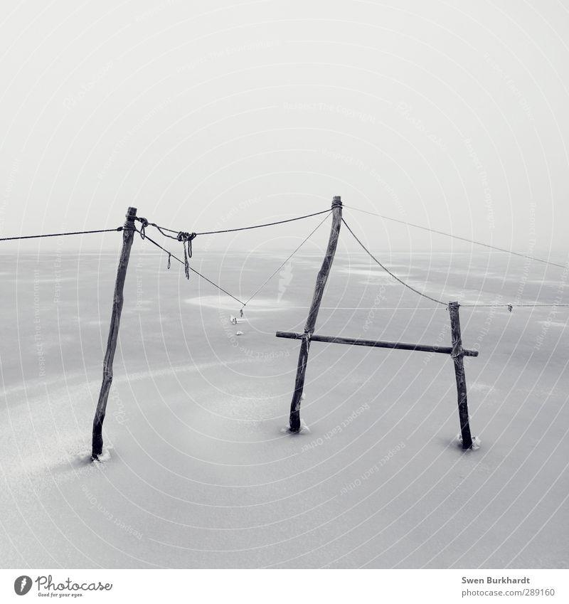 20 Knoten halten besser als 19 Natur Winter ruhig Landschaft Umwelt kalt Schnee Holz See Luft Metall Linie Eis Wetter Klima Nebel