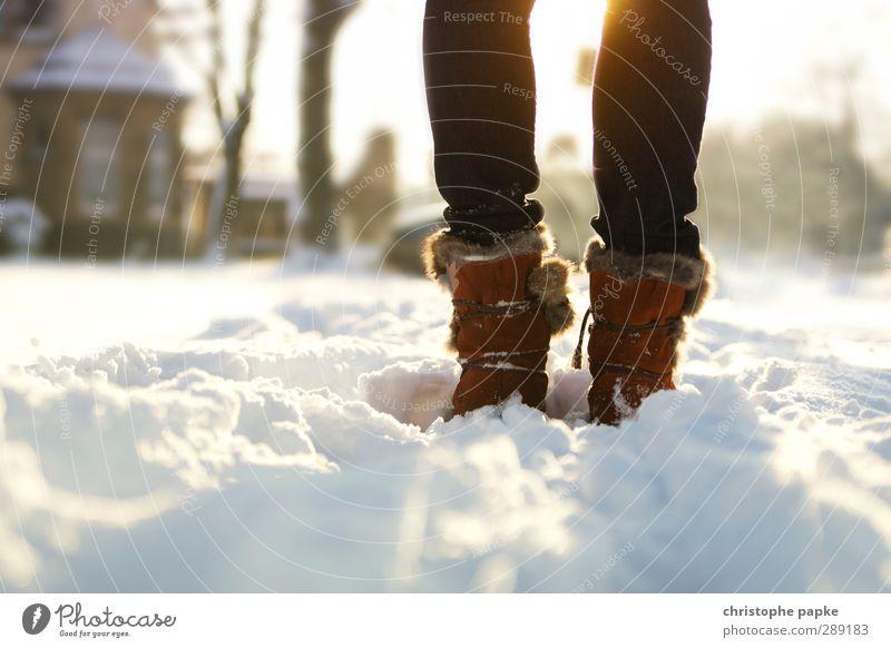 Winterzauber Mensch Erholung kalt Schnee feminin gehen Beine hell Fuß Eis Schuhe stehen Schönes Wetter Spaziergang Frost