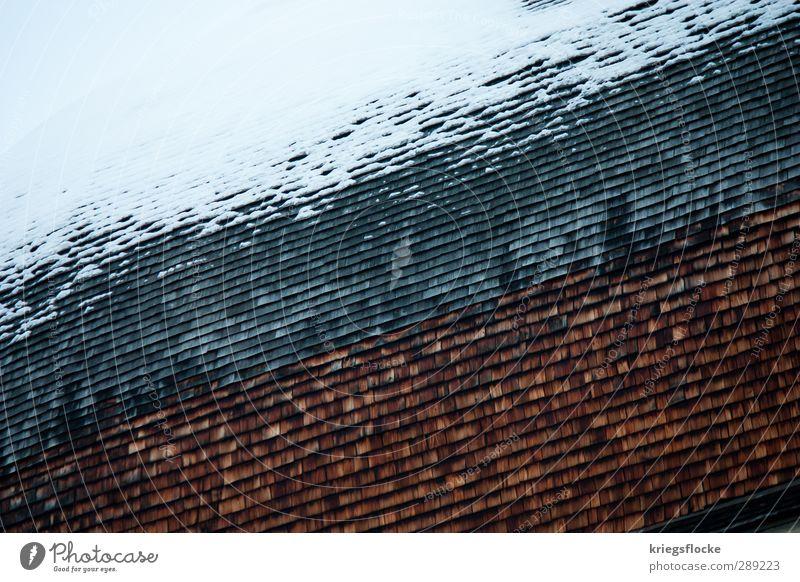 Wetterseite alt weiß ruhig Winter kalt Senior Schnee Architektur grau Holz natürlich braun Eis orange Zufriedenheit