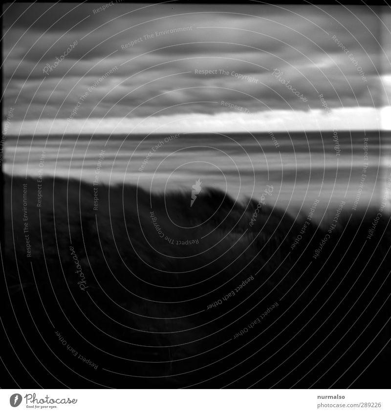 Ostseerauschen Natur Ferien & Urlaub & Reisen Wasser Strand Landschaft Erholung Ferne dunkel Herbst Bewegung Küste Stimmung Kunst außergewöhnlich Wellen