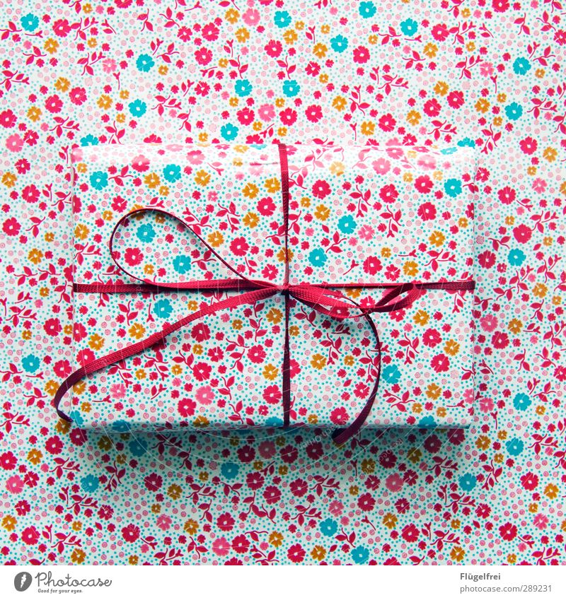 Geschenke verstecken Schleife Vorfreude Tarnung getarnt Versteck Verpackung Weihnachten & Advent Feste & Feiern rot Blumenmuster unsichtbar Chamäleon Farbfoto