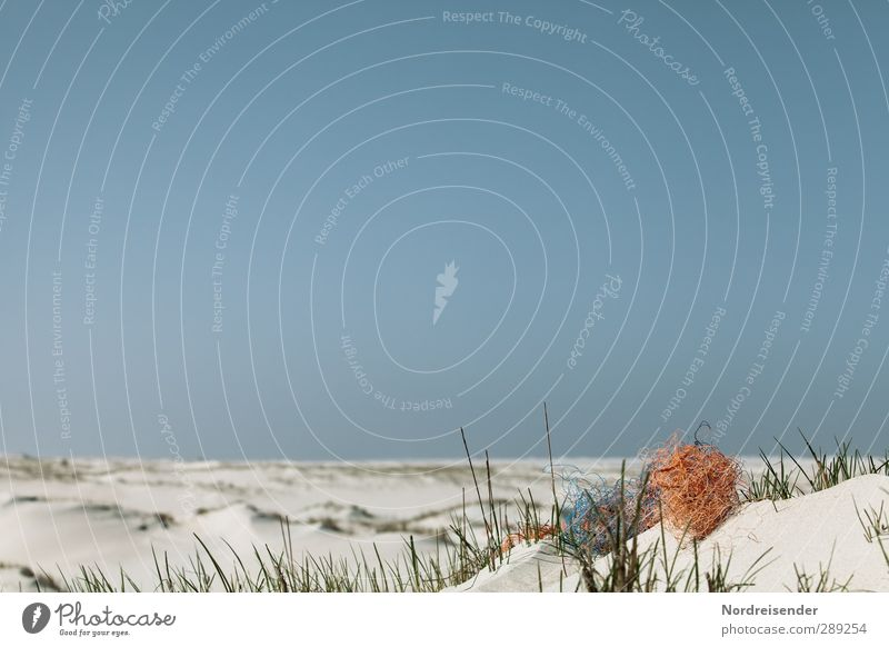 Verweht.... Natur Ferien & Urlaub & Reisen Sommer Sonne Meer Strand ruhig Landschaft Ferne Wärme Gras Freiheit Sand Stimmung Klima Schönes Wetter
