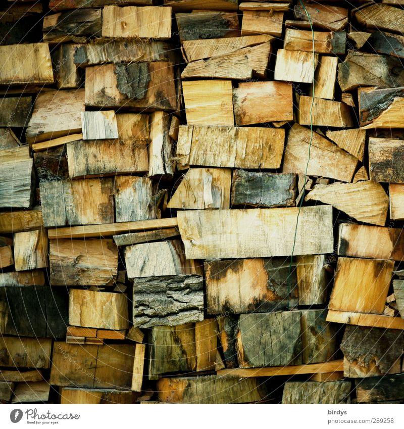 Klimaneutraler Brennstoff Holz authentisch nachhaltig natürlich positiv Wärme Energie Brennholz Holzstapel viele Farbfoto Außenaufnahme Menschenleer