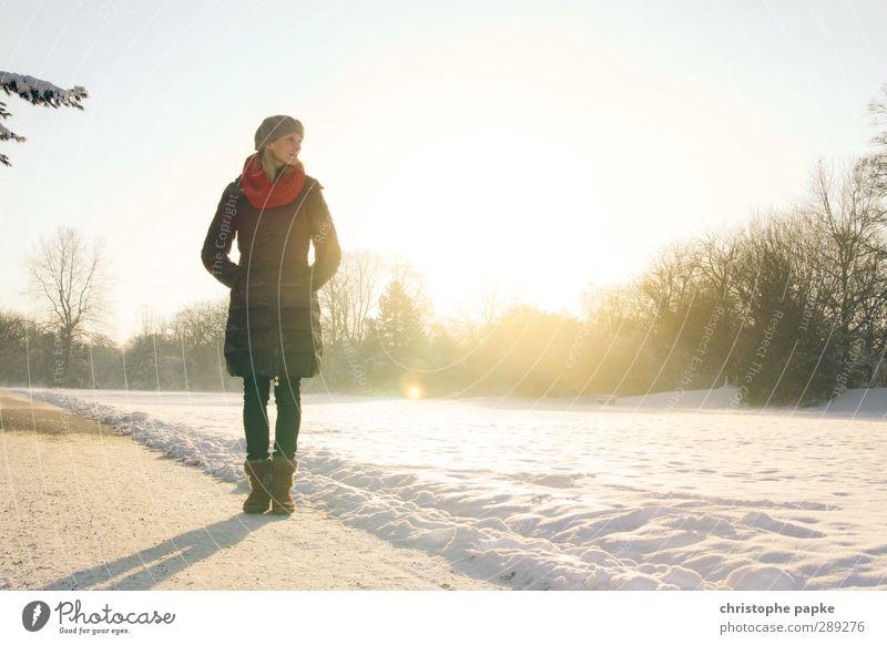 Wintersonne Mensch Jugendliche schön Winter Erholung Junge Frau Erwachsene kalt Schnee 18-30 Jahre Stil träumen Eis Park elegant stehen