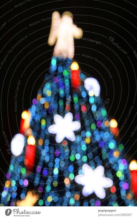 Baum Winter Feste & Feiern Weihnachten & Advent androgyn Körper Stadt Sehenswürdigkeit Zeichen Ornament gigantisch glänzend groß Engel Stern Kerze Lichterkette