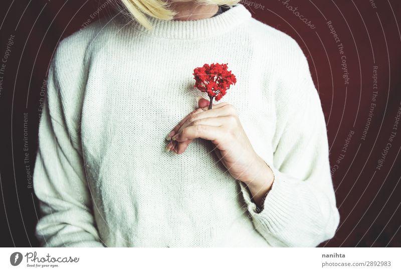 Junge Frau hält einen kleinen roten Baum. Design Mensch feminin Erwachsene 1 Kunst Umwelt Natur Pflanze Herbst Wachstum authentisch einzigartig nachhaltig