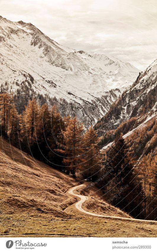 Hinten im Tal Schnee wandern Umwelt Natur Landschaft Urelemente Wolken Klima Klimawandel Wetter Baum Wiese Wald Hügel Felsen Alpen Berge u. Gebirge Gipfel