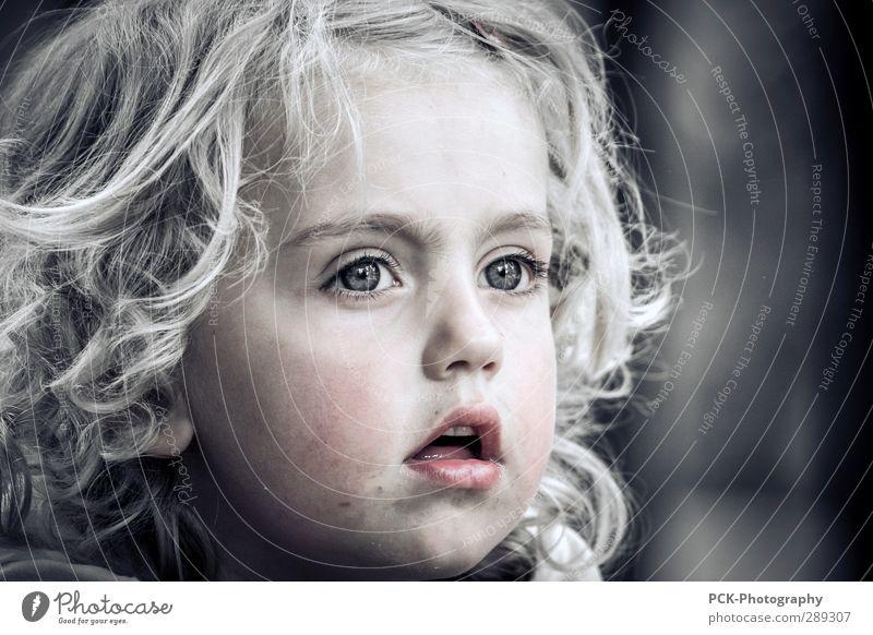 Fernblick feminin Kind Mädchen Kopf Gesicht Auge 1 Mensch 3-8 Jahre Kindheit Denken Blick dreckig Fröhlichkeit schön niedlich Gefühle Zufriedenheit Vorfreude