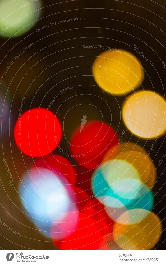 A Garden bursting into Life. Stil Licht schön blau gelb rot türkis Punkt streben steigen abgegrenzt Schnittmenge Reinigen rund knallig Unschärfe Lichtpunkt
