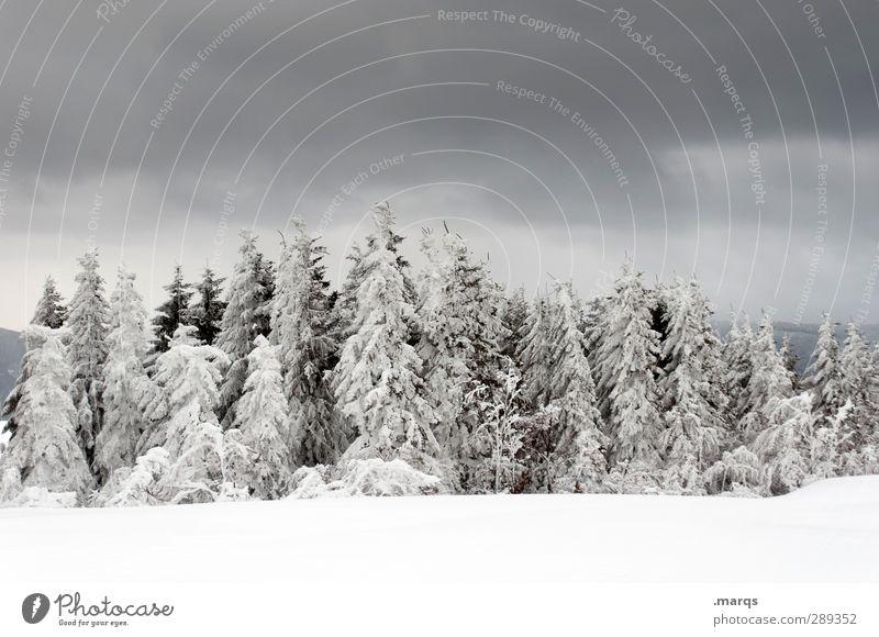 Düstere Zeiten Ausflug Abenteuer Winter Schnee Winterurlaub Natur Landschaft Urelemente Himmel Gewitterwolken Klima Klimawandel Unwetter Zeichen dunkel kalt