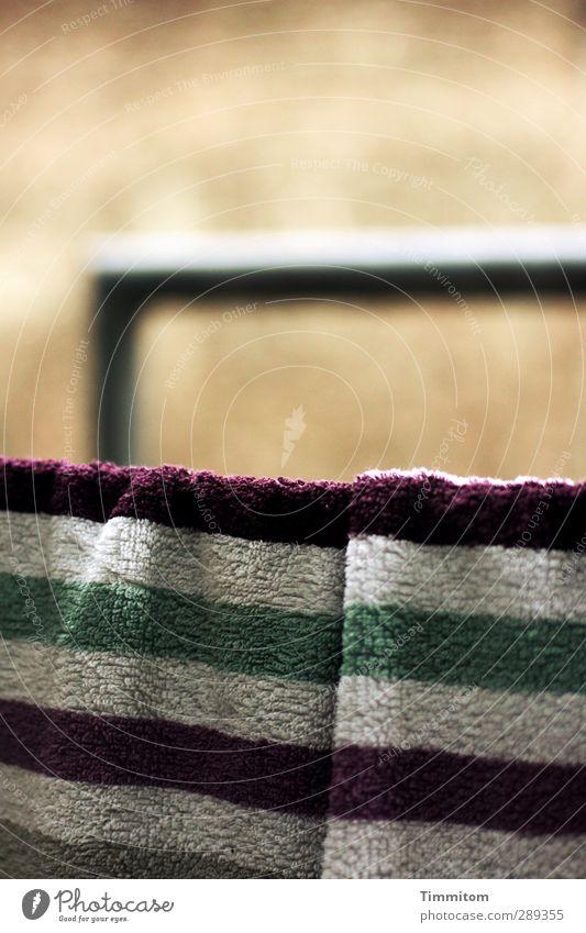 To S+R: Sad to see the season go grün weiß Wand Gefühle Mauer braun Zufriedenheit warten einfach violett Zusammenhalt hängen Erwartung Ehrlichkeit Frottée Feuerleiter