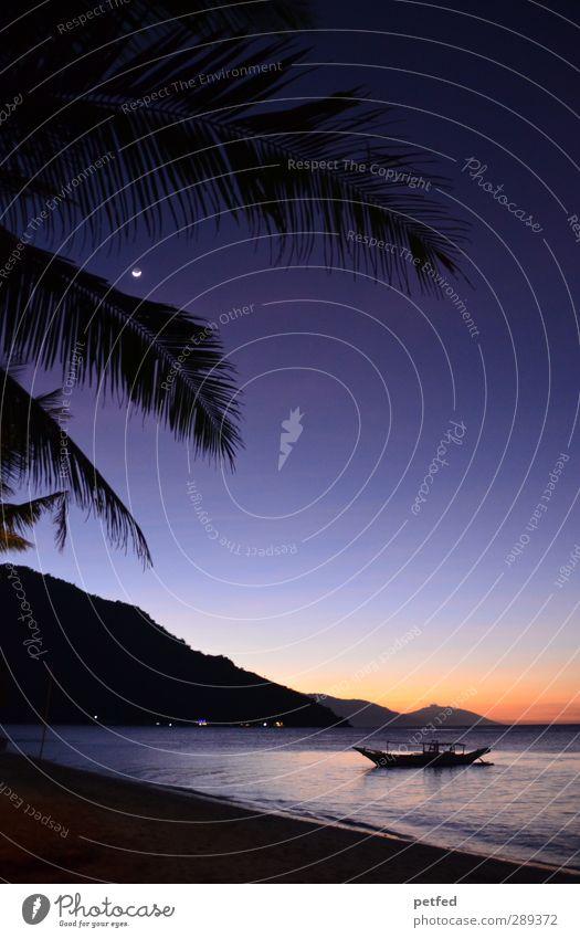 Stille Nacht Ferien & Urlaub & Reisen Sonne Strand Meer Insel Himmel Nachthimmel Sonnenaufgang Sonnenuntergang Mond Sommer Wärme Palme Hügel Mindoro