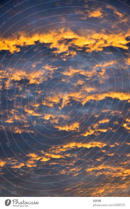 brennende Himmel Umwelt Natur Urelemente Luft nur Himmel Wolken Sonnenaufgang Sonnenuntergang Sommer Wetter Wärme ästhetisch außergewöhnlich fantastisch