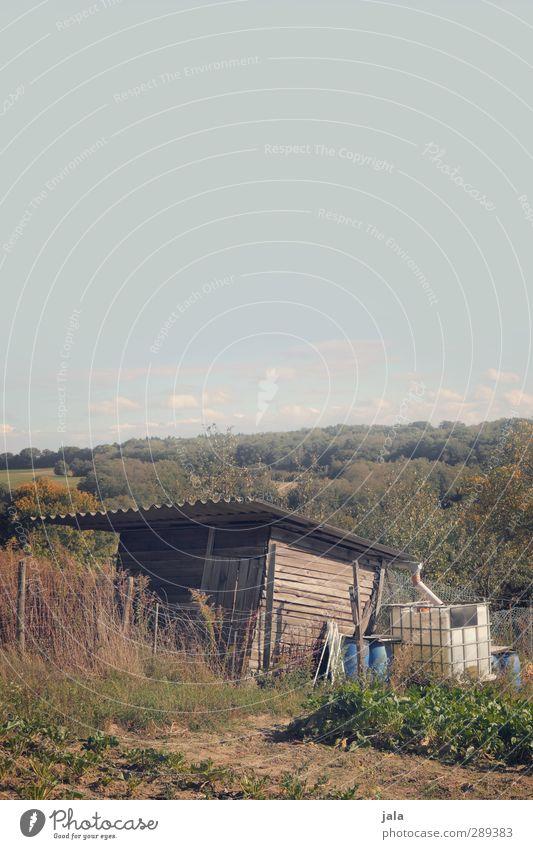 schuppen Himmel Natur Pflanze Landschaft Wald Umwelt Herbst Gras Garten natürlich Sträucher Hügel Hütte