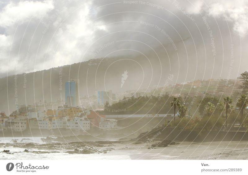 Puerto de la Cruz³ Landschaft Himmel Wolken Nebel Baum exotisch Palme Hügel Felsen Küste Meer Teneriffa Haus Hochhaus weich Dunst Farbfoto Gedeckte Farben