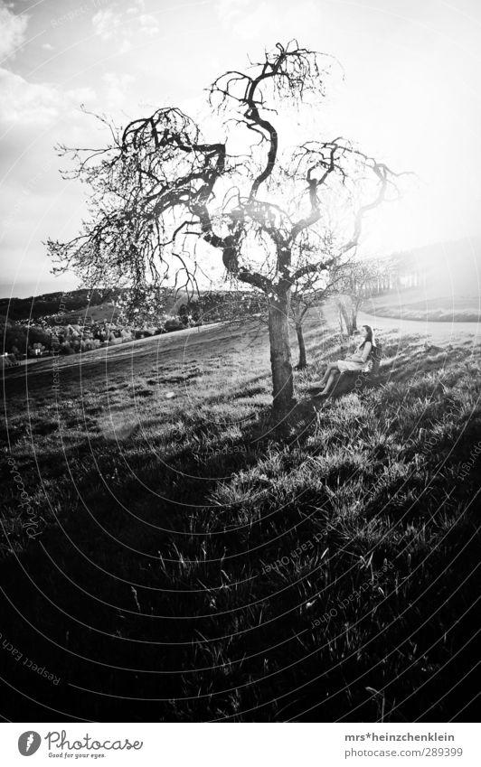 chasing the sun Mensch Kind Frau Himmel Natur Jugendliche Sommer Baum Freude Mädchen Wolken ruhig Landschaft Erholung Erwachsene Ferne