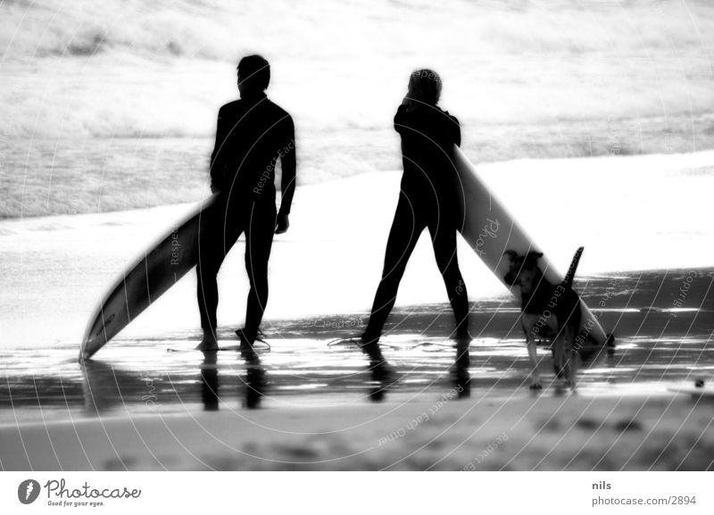 Is it Love? Strand Meer Surfen Surfbrett Hund Infrarotaufnahme Personenzug Wellen Brandung Aussicht Sport Schwarzweißfoto b/w bw Wasser beobachten