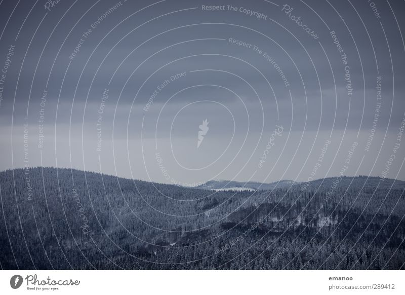weiche kalte Hügel Himmel Natur Winter Wolken ruhig Landschaft Wald Umwelt Berge u. Gebirge Schnee grau Schneefall Eis Wetter Wind