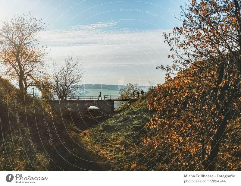 Kleine Brücke in der Herbstlandschaft Tourismus Ausflug Natur Landschaft Himmel Wolken Sonne Sonnenlicht Schönes Wetter Baum Blatt Hügel Burg oder Schloss gehen