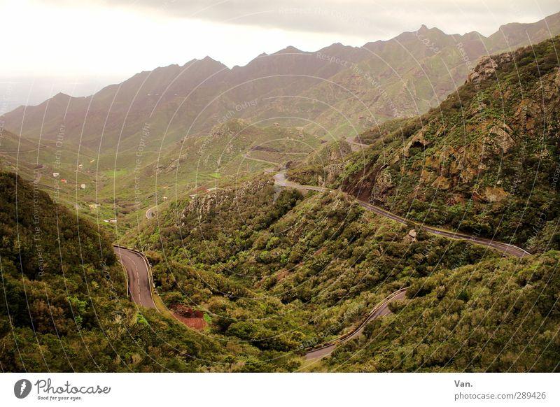 Der Weg ist das Ziel Natur Landschaft Pflanze Erde Himmel Wolken Gras Sträucher Hügel Felsen Berge u. Gebirge Tal Teneriffa Straße grün Farbfoto Gedeckte Farben