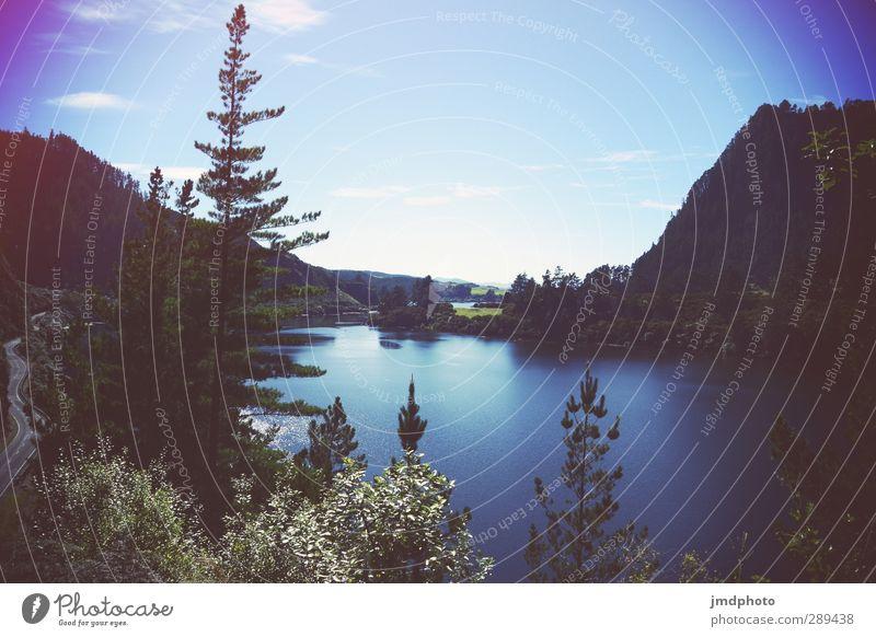 ich will zurück Himmel Wasser Sommer Baum Landschaft Erholung Wald Umwelt Berge u. Gebirge See Schwimmen & Baden Luft Horizont Wetter wandern Schönes Wetter