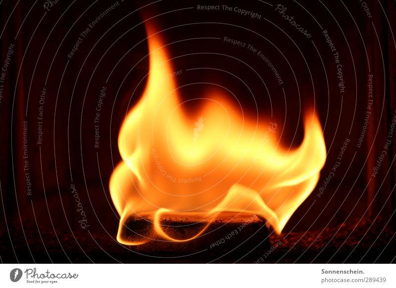 Zünde alle Feuer rot Erholung schwarz Wärme Liebe orange Wohnung Kraft Zufriedenheit Häusliches Leben leuchten Energie Abenteuer Feuer Leidenschaft Mut