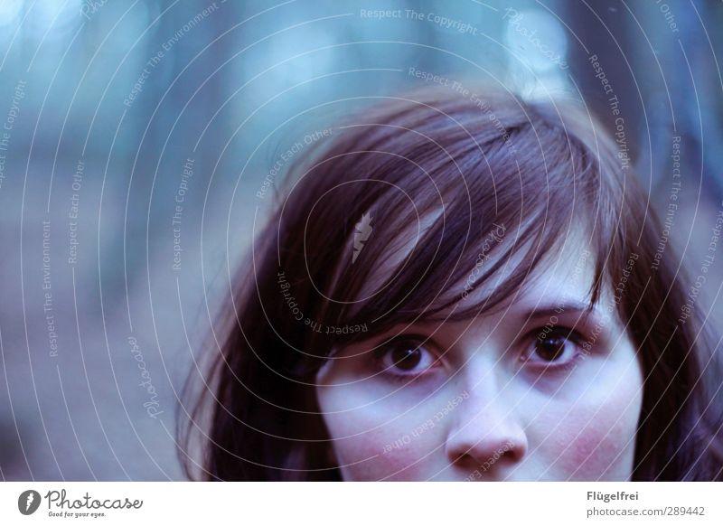Siehst du das auch? feminin Junge Frau Jugendliche 1 Mensch 18-30 Jahre Erwachsene Blick Horrorfilm Gesicht kalt erfrieren erstarren Starrer Blick Schrecken