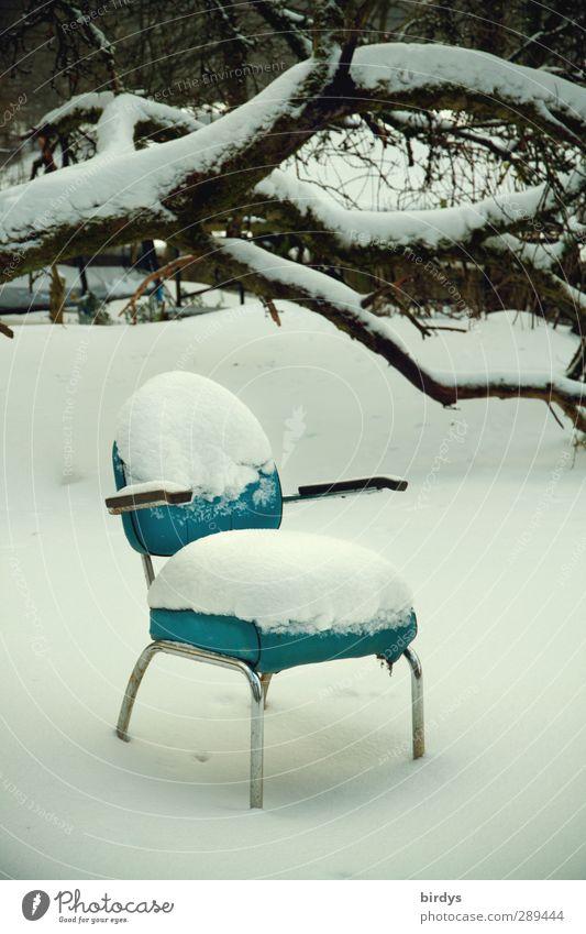 Winter   kühles Polster Möbel Sessel Stuhl Eis Frost Schnee Baum warten außergewöhnlich kalt positiv blau weiß geduldig ruhig Hoffnung Design Frustration