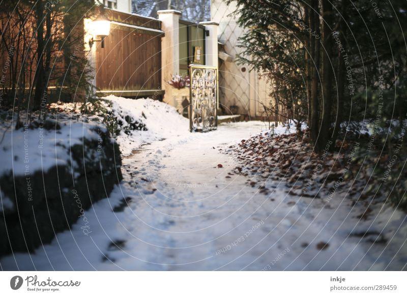 winter Natur Baum Winter dunkel kalt Schnee Wege & Pfade Garten Sträucher Zaun Laterne Straßenbeleuchtung Holzzaun Gartenweg Gartentor