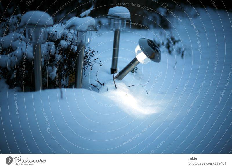 wackeres Schlusslicht [Winter] dunkel kalt Schnee Gefühle Garten hell Stimmung Eis Zusammensein außergewöhnlich Wetter Energiewirtschaft stehen leuchten Frost