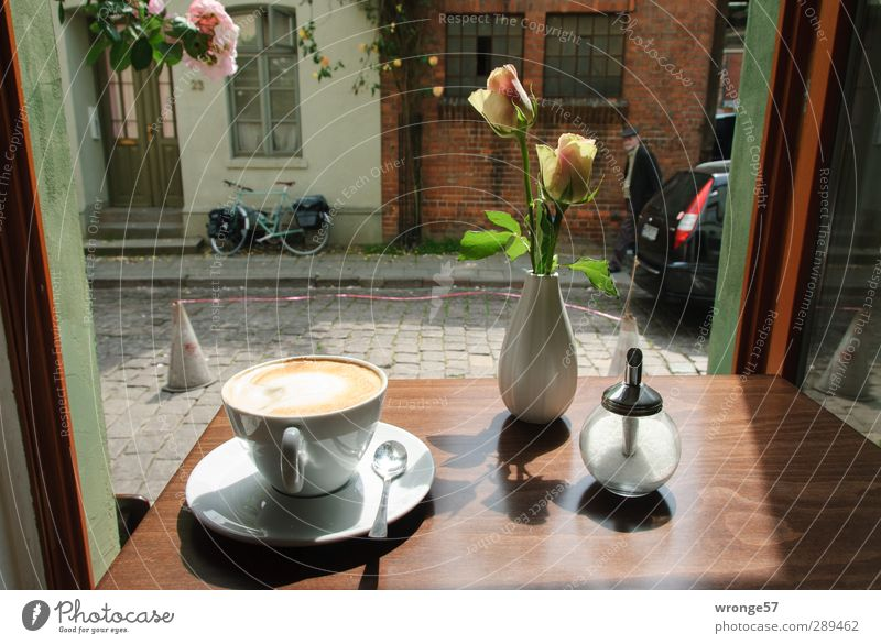 Ein Ort der Glücklichkeit Sommer Blume Erholung Fenster Essen Deutschland Fassade Europa Tisch beobachten trinken Café Geschirr Tasse Stadtzentrum