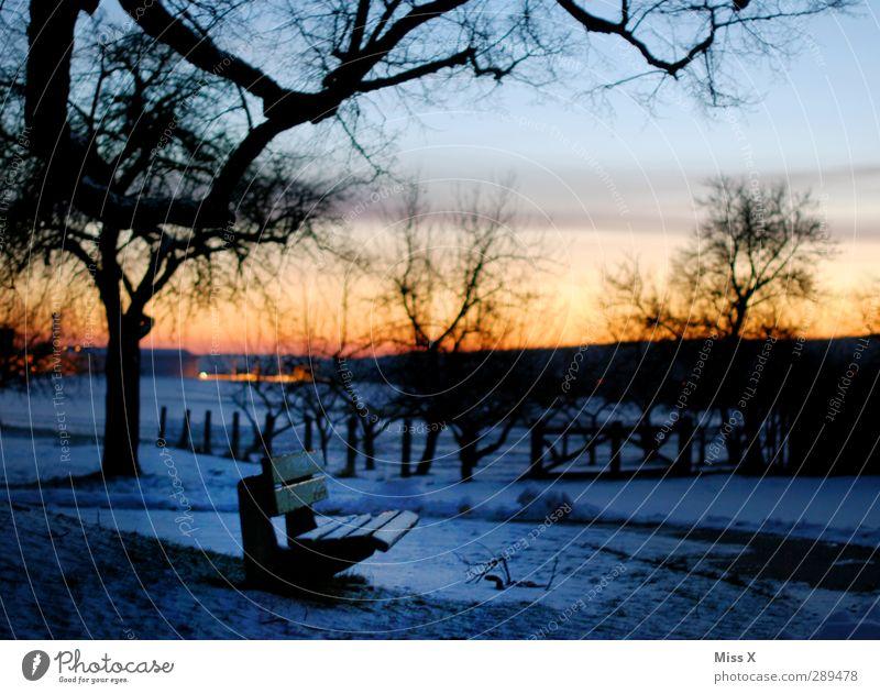 Winter Landschaft Sonnenaufgang Sonnenuntergang Baum Park kalt Schneelandschaft Parkbank Farbfoto mehrfarbig Außenaufnahme Menschenleer Morgendämmerung