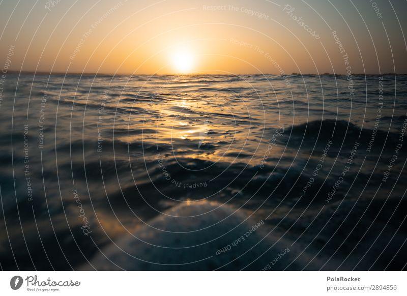 #A# down she goes Kunst ästhetisch Meer Wasser Wasseroberfläche Sonnenuntergang Idylle Farbfoto Gedeckte Farben Außenaufnahme Detailaufnahme Experiment abstrakt