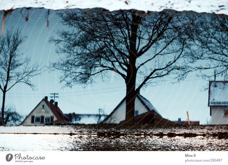 Winter Wasser Schnee Baum Bach kalt Wasserspiegelung Dach Farbfoto Außenaufnahme Menschenleer Dämmerung Reflexion & Spiegelung