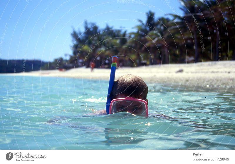 Ich sehe was, was Du nicht siehst... tauchen Meer Schnorcheln Taucherbrille türkis Palme Sport Wasser blau