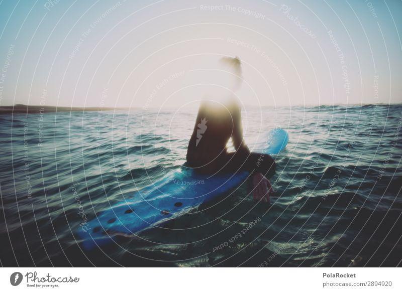#A# sitting duck Umwelt Natur Schönes Wetter ästhetisch Surfen Surfer Surfbrett Surfschule Meer Wassersport Freiheit anonym Außenaufnahme Urlaubsfoto Farbfoto