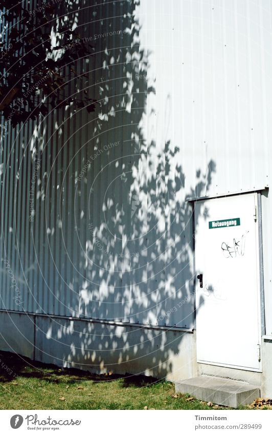 Weltuntergang  A Way Out? Fabrik Mauer Wand Tür Metall warten einfach grau grün weiß Notausgang Baum Schatten Gras Farbfoto Gedeckte Farben Außenaufnahme