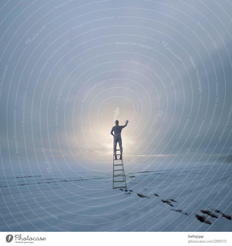 hallo welt Mensch maskulin Mann Erwachsene Körper 1 Umwelt Natur Landschaft Erde Wolken Horizont Winter Nebel Feld weiß Leiter Leitersprosse Klettern stehen