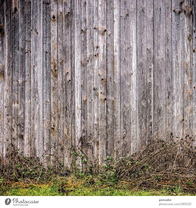 weltuntergang | geschlossene gesellschaft! Umwelt Natur Pflanze Urelemente Erde Klima Gras Feld Menschenleer Haus Hütte Mauer Wand Fassade Holz Gefühle
