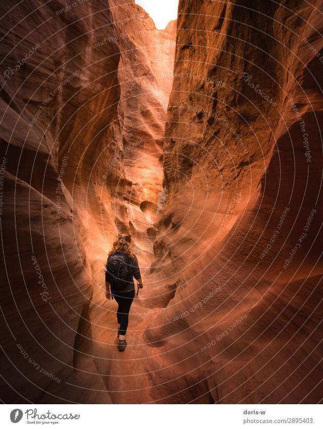 Rein ins Ungewisse wandern feminin Junge Frau Jugendliche 1 Mensch Natur Landschaft Erde Sand Dürre Felsen Schlucht Wüste Wanderschuhe rothaarig Neugier