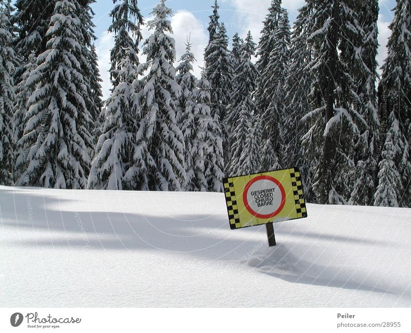 Gesperrte Piste Winter Wald Berge u. Gebirge Schnee Eis Schneelandschaft Verbote unberührt Warnschild Skipiste Winterwald gesperrt Warnfarbe Tiefschnee