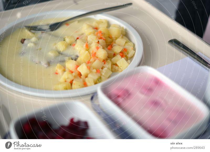 lecker Essen Lebensmittel Fleisch Joghurt Gemüse Dessert Süßwaren Quarkspeise Rote Beete Kartoffeln Ernährung Mittagessen Abendessen Teller Schalen & Schüsseln