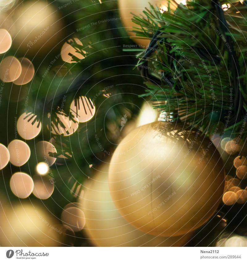 The day after the day after... Weihnachtsbaum schmücken! Metall Gold Kunststoff rund grün Weihnachten & Advent Weihnachtsbeleuchtung Weihnachtsdekoration Tanne