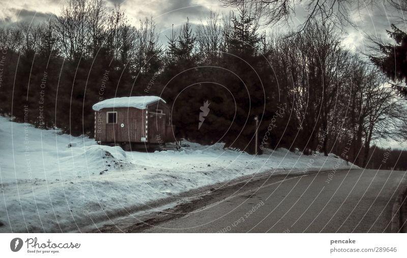stille nacht Natur Landschaft Wolken Winter Eis Frost Schnee Baum Wald Hütte Straße Bauwagen Stimmung Sicherheit Schutz ruhig Einsamkeit Farbfoto