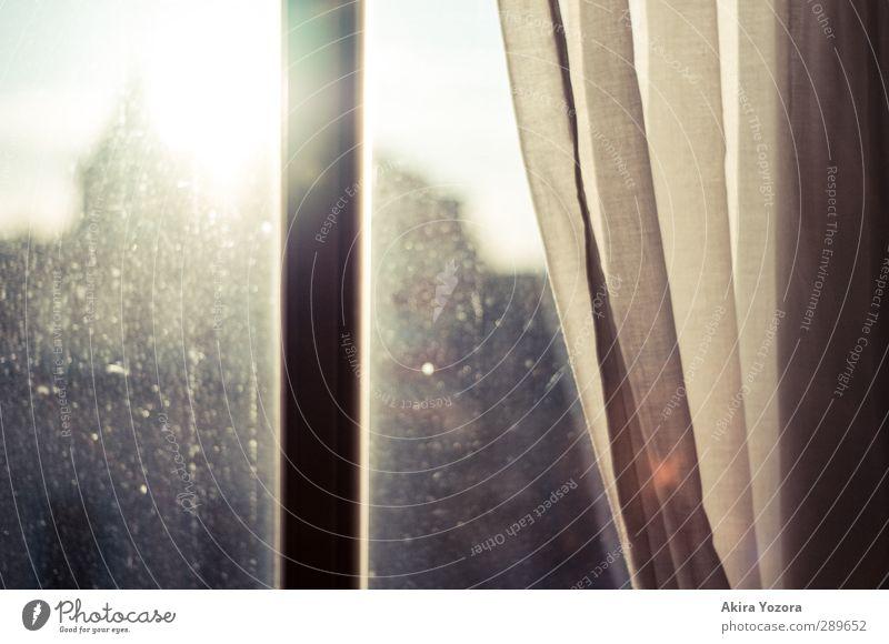 Good bye Summer Fenster Sonne Sonnenlicht Gegenlicht Silhouette Vorhang Gardine