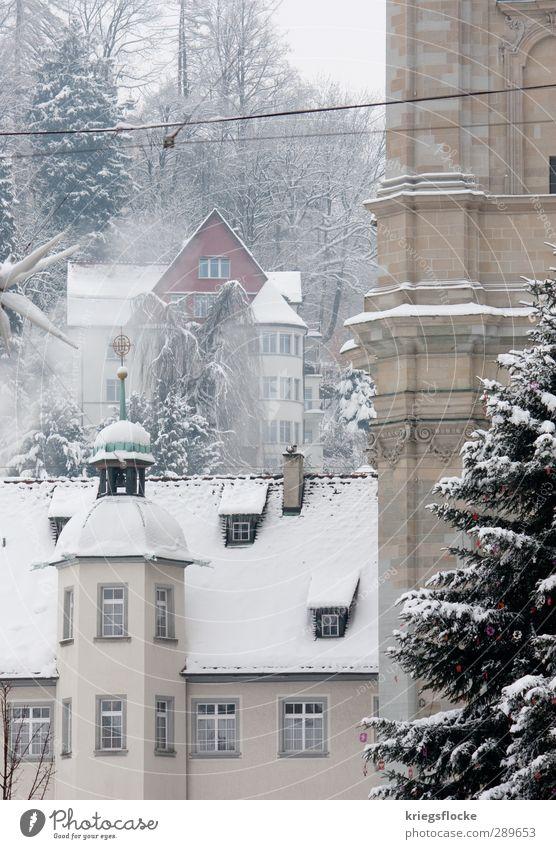 Der Traum der weißen Weihnacht Winter Eis Frost Schnee Blume Kleinstadt Stadt Stadtzentrum Altstadt Menschenleer Haus Kirche Dom Turm Gebäude Mauer Wand Fassade