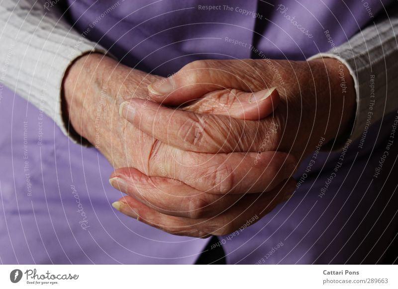 gefaltete Hände feminin Weiblicher Senior Frau Großmutter Leben 60 und älter Pullover Stoff Schürze berühren machen dünn nah Fingernagel Hautfalten Gebet warten