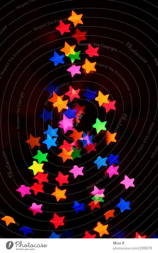 Sternachten Weihnachten & Advent Winter Baum leuchten Kitsch mehrfarbig Stern (Symbol) Unschärfe Weihnachtsbaum Baumschmuck Weihnachtsbeleuchtung Lichterkette